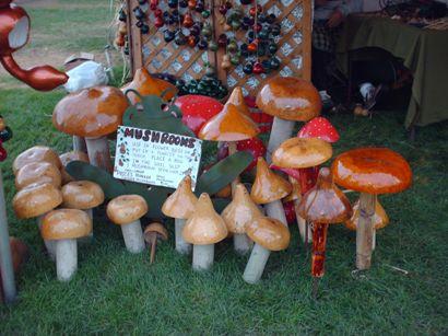 mushroomsoglebay.jpg