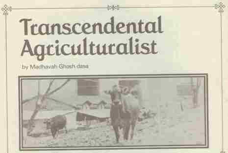 transcendental-agriculturalist.jpg