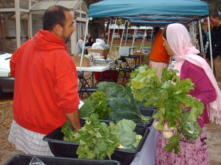 alachua-market-gardener