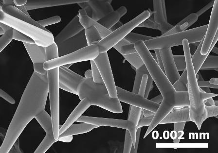 zinc-oxide-microscopy
